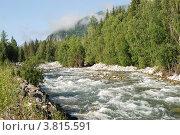 Купить «Река Мульта. Горный Алтай», фото № 3815591, снято 15 июля 2009 г. (c) Анна Омельченко / Фотобанк Лори