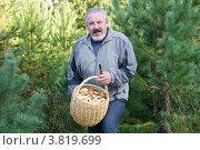 Купить «Мужчина с полной корзиной маслят в лесу», фото № 3819699, снято 6 сентября 2012 г. (c) Дудакова / Фотобанк Лори