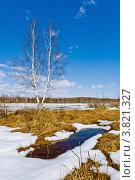 Купить «Весенний пейзаж с с проталинами и лужами», фото № 3821327, снято 16 апреля 2011 г. (c) Ольга Денисова / Фотобанк Лори