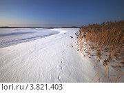 Купить «Зимние просторы», фото № 3821403, снято 9 марта 2012 г. (c) Ольга Денисова / Фотобанк Лори