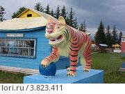 Купить «Тигр у Иволгинского дацана. Бурятия», фото № 3823411, снято 2 августа 2012 г. (c) Валерий Митяшов / Фотобанк Лори