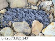 Дефрагментированый камень. Стоковое фото, фотограф Артур Худолий / Фотобанк Лори