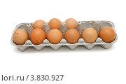 Коричневые куриные яйца в картонной кассете. Стоковое фото, фотограф Shlomo Polonsky / Фотобанк Лори