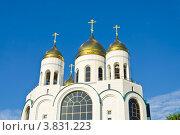 Купить «Купола храма Христа Спасителя. Калининград», фото № 3831223, снято 28 августа 2012 г. (c) Сергей Трофименко / Фотобанк Лори
