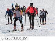 Купить «Ски-альпинизм. Камчатка», фото № 3836251, снято 21 апреля 2012 г. (c) А. А. Пирагис / Фотобанк Лори