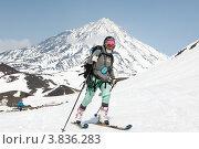 Купить «Ски-альпинизм. Камчатка, Корякский вулкан», фото № 3836283, снято 21 апреля 2012 г. (c) А. А. Пирагис / Фотобанк Лори