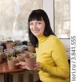 Купить «Девушка с рассадой в руках», фото № 3841555, снято 24 марта 2012 г. (c) Яков Филимонов / Фотобанк Лори