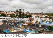 Купить «Рисунки яхтсменов  в порту острова Файал, город Орта», фото № 3842379, снято 4 мая 2012 г. (c) Юлия Бабкина / Фотобанк Лори