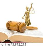 Купить «Судейский молоток на раскрытой книге», фото № 3872215, снято 22 сентября 2012 г. (c) Ласточкин Евгений / Фотобанк Лори
