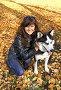 Девушка с собакой породы сибирский хаски (siberian husky) в осеннем парке, фото № 3872243, снято 22 сентября 2012 г. (c) ElenArt / Фотобанк Лори