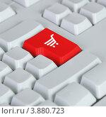 Купить «Онлайн-шопинг. Красная кнопка покупки», иллюстрация № 3880723 (c) Sergey Nivens / Фотобанк Лори