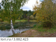 Лесное озеро. Осень. Стоковое фото, фотограф Виталий Калинин / Фотобанк Лори