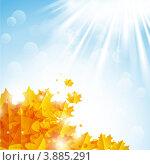Купить «Солнечный фон с кленовыми листьями», иллюстрация № 3885291 (c) Евгения Малахова / Фотобанк Лори