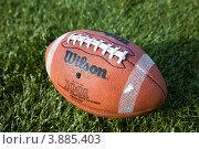 Купить «Мяч для американского футбола на зеленом газоне стадиона», фото № 3885403, снято 29 сентября 2012 г. (c) Николай Винокуров / Фотобанк Лори