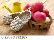 Купить «Яблочный Спас. Композиция из красных яблок, декоративных лаптей и желтой лейки», фото № 3892927, снято 12 августа 2012 г. (c) Олеся Сарычева / Фотобанк Лори