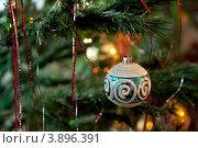 Ёлочная игрушка на ветке. Стоковое фото, фотограф Татьяна Саламахина / Фотобанк Лори