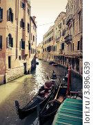 Венеция (2012 год). Стоковое фото, фотограф Ольга Холодкова / Фотобанк Лори