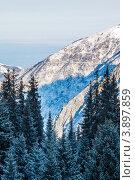 Заилийский Алатау, горная система Тянь-Шань, Казахстан (2012 год). Стоковое фото, фотограф Антон Журавков / Фотобанк Лори
