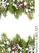Рождественская рамка. Еловые ветки с шишками и снегом. Стоковое фото, фотограф Сергей Фигурный / Фотобанк Лори