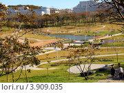 Территория кампуса ДВФУ (2012 год). Стоковое фото, фотограф Елена Семистенова / Фотобанк Лори