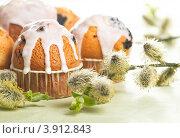 Купить «Пасхальные куличи и цветущая верба», фото № 3912843, снято 20 апреля 2010 г. (c) Лисовская Наталья / Фотобанк Лори