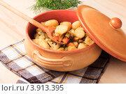 Купить «Молодая картошка с овощами запеченная в горшочке на салфетке», фото № 3913395, снято 8 июля 2011 г. (c) Оксана Ковач / Фотобанк Лори