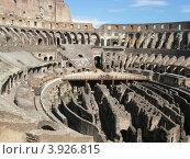 Колизей в Риме (2012 год). Стоковое фото, фотограф Елена Верховых / Фотобанк Лори