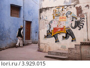 Индия (2012 год). Редакционное фото, фотограф Svetlana Eremina / Фотобанк Лори