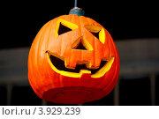 Купить «Хэллоуин», фото № 3929239, снято 27 сентября 2012 г. (c) Хайрятдинов Ринат / Фотобанк Лори