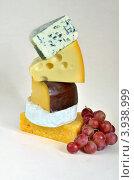 Пять разных сыров. Стоковое фото, фотограф Julia Ovchinnikova / Фотобанк Лори