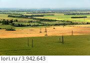 Жёлтые и зелёные поля, пейзаж Украины. Стоковое фото, фотограф Владимир Фалин / Фотобанк Лори