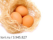 Купить «Три коричневых яйца в гнезде», фото № 3945827, снято 20 октября 2012 г. (c) Анна Мартынова / Фотобанк Лори