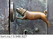Купить «Старинная дверная ручка в виде собаки», фото № 3948927, снято 12 августа 2012 г. (c) Роман Сигаев / Фотобанк Лори
