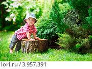 Маленький малыш в клетчатой рубашке стоит около пня в летнем лесу (2012 год). Редакционное фото, фотограф Екатерина Штерн / Фотобанк Лори