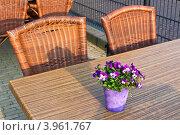 Купить «Кафе на открытом воздухе», фото № 3961767, снято 20 апреля 2011 г. (c) Анастасия Золотницкая / Фотобанк Лори