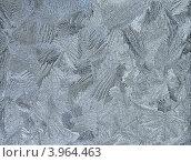 Купить «Серебряный морозный узор - натуральный зимний фон», фото № 3964463, снято 20 ноября 2011 г. (c) Светлана Ильева (Иванова) / Фотобанк Лори