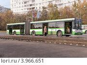 Купить «Сочлененный автобус ЛиАЗ на остановке», эксклюзивное фото № 3966651, снято 15 октября 2012 г. (c) Алёшина Оксана / Фотобанк Лори