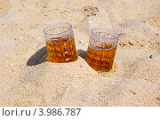 Купить «Две кружки пива на солнечном пляже у моря», фото № 3986787, снято 22 октября 2012 г. (c) Ирина Балина / Фотобанк Лори