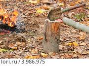 Купить «Лопата воткнута в чурбак на фоне костра», эксклюзивное фото № 3986975, снято 21 октября 2012 г. (c) Алёшина Оксана / Фотобанк Лори