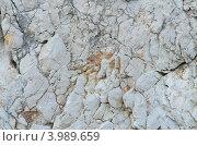 Старая каменная стена, фон. Стоковое фото, фотограф Александр Тесевич / Фотобанк Лори