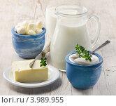 Купить «Молочные продукты», фото № 3989955, снято 2 октября 2012 г. (c) Tatjana Baibakova / Фотобанк Лори