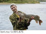Купить «Молодой рыболов держит в руках и разглядывает выловленную большую щуку», фото № 3991875, снято 6 августа 2012 г. (c) Валерий Крывша / Фотобанк Лори