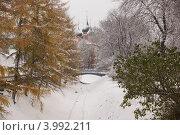Церковь Михаила Архангела в Ярославле (2012 год). Стоковое фото, фотограф Оскар Митревиц / Фотобанк Лори