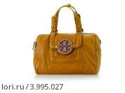 Купить «Дамская сумка с круглой пряжкой на белом фоне», фото № 3995027, снято 25 декабря 2011 г. (c) Elnur / Фотобанк Лори