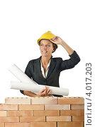 Купить «Женщина-архитектор с чертежами», фото № 4017203, снято 27 июля 2012 г. (c) Elnur / Фотобанк Лори