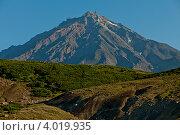 Корякский вулкан, Камчатка. Стоковое фото, фотограф Никита Вишневецкий / Фотобанк Лори