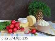 Натюрморт с редиской и сыром. Стоковое фото, фотограф Julia Ovchinnikova / Фотобанк Лори