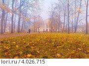 Купить «Утро. Октябрь.», фото № 4026715, снято 20 октября 2012 г. (c) Sermini / Фотобанк Лори
