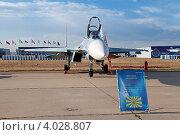 Купить «Жуковский, 100 лет ВВС России. Су-27 — многоцелевой высокоманевренный всепогодный истребитель четвёртого поколения», фото № 4028807, снято 11 августа 2012 г. (c) Игорь Долгов / Фотобанк Лори