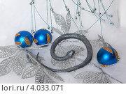 Купить «Змея рядом с ёлочными игрушками», фото № 4033071, снято 19 ноября 2012 г. (c) Екатерина Панфилова / Фотобанк Лори